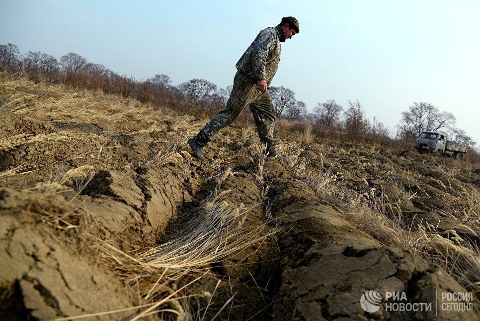 Участник программы Дальневосточный гектар Иван Панин в Хабаровском крае
