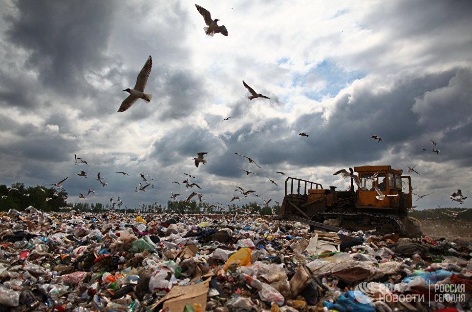 Три билборда по‐русски. Гринпис призвал «Пятерочку» отказаться от пластиковых пакетов | Изображение 2