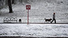 Прохожий гуляет с собакой на улице после снегопада в Москве. Архивное фото