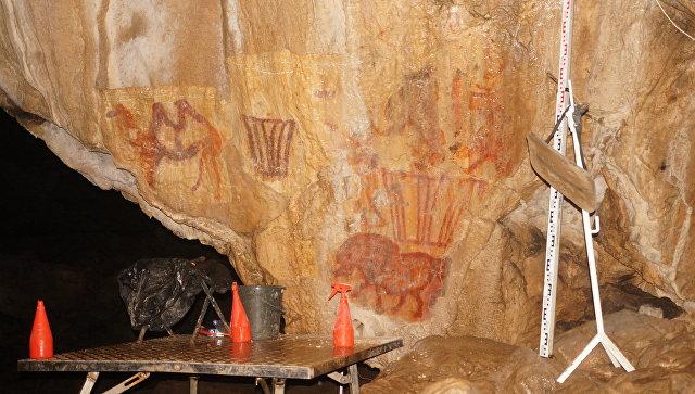 Изображение верблюда, найденное в Каповой пещере