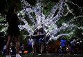 Новогоднее украшение парка в Сан-Паулу, Бразилия