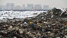 Мусор на полигоне твердых бытовых отходов Кучино в Балашихе Московской области