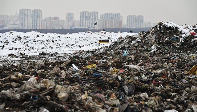 Большинство россиян выступают за раздельный сбор мусора, сообщили в ОНФ