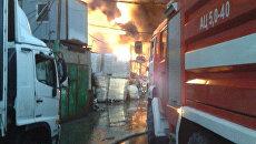 Пожар под Подольском. 31 декабря 2017