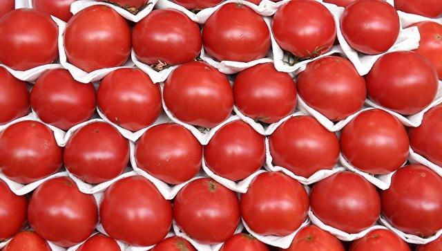 Россельхознадзор зафиксировал нарушения по томатам из Турции