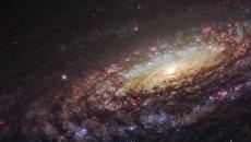 Спиральная галактика NGC 7331 в созвездии Пегас