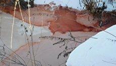 Красные пятеня на поверхности мелиоративных каналов в Тюменском районе  в окрестностях деревни Молчанова. 30 января 2018