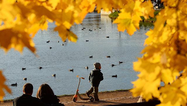 Отдыхающие в парке Царицыно в Москве