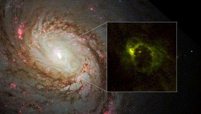 Первая фотография «бублика» черной дыры в галактике M77
