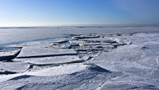 Лед на поверхности Финского залива. Архивное фото