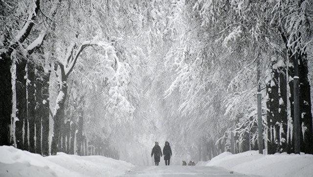 Эксперт прокомментировала исследование о смертельной опасности зимы