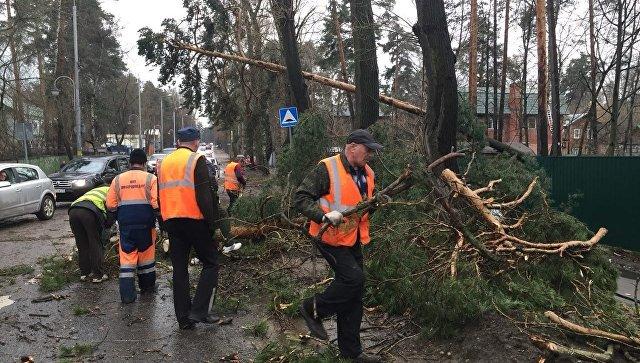 Ураган в Москве привел к жертвам