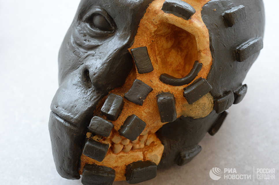 """Российские ученые """"оживили"""" древних людей, вымерших триста тысяч лет назад"""