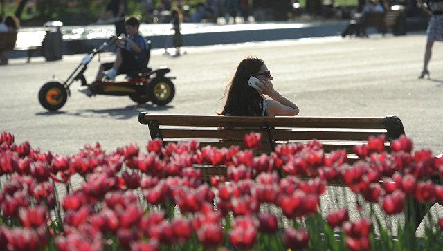Тюльпаны в парке. Архивное фото