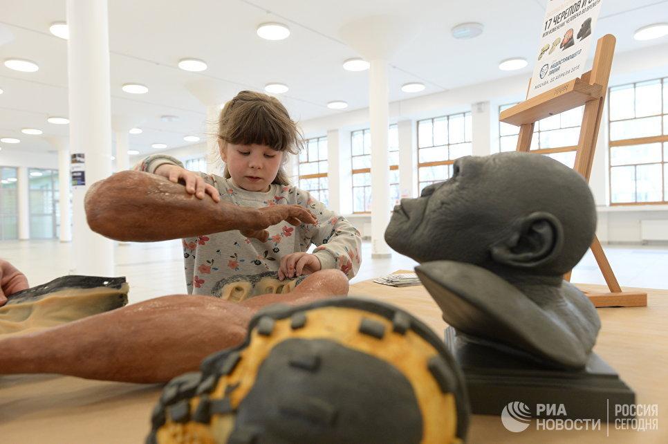 Юная участница фестиваля День недостающего звена знакомится с реконструкцией руки древнего человека Homo naledi