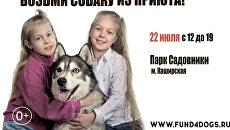Фестиваль Собаки, которые любят в помощь животным из приютов