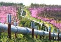 Трансаляскинский нефтепровод. Архивное фото