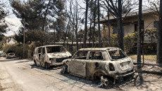Сгоревшие в результате лесных пожаров автомобили на улице Мати в Греции. 25 июля 2018