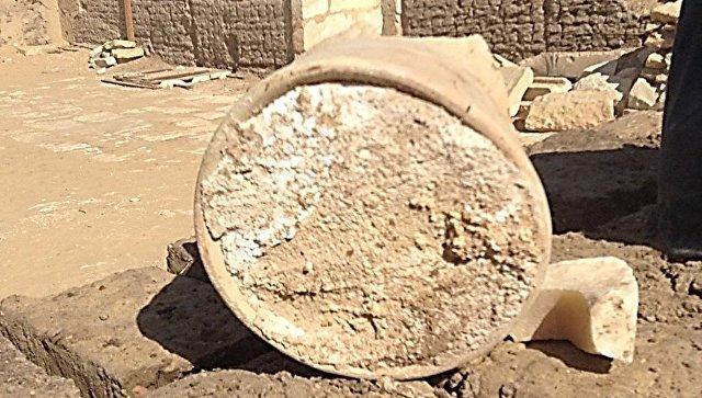 Сыр, найденный в гробнице мэра Мемфиса в Саккаре
