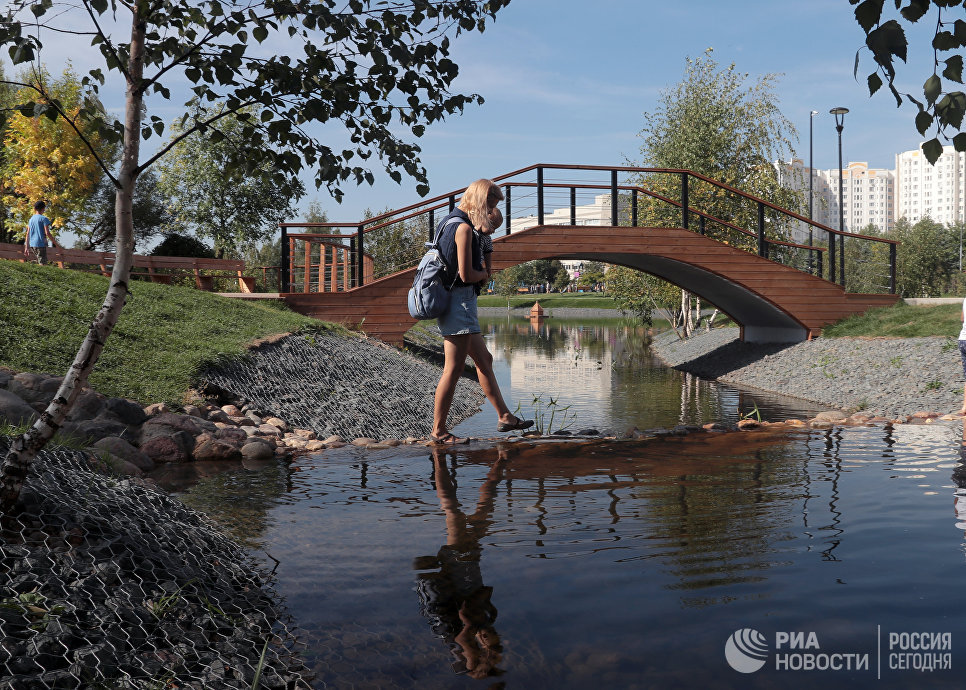 Мост в парке Южное Бутово