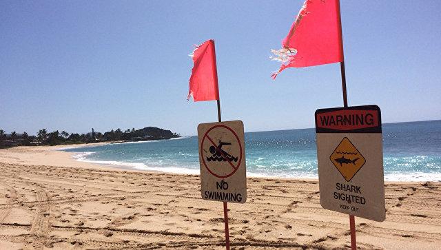 Предупреждение об акулах на пляже парка Макаха Бич на Гавайях