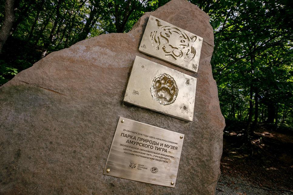 На острове Русский создадут Парк природы и Музей амурского тигра