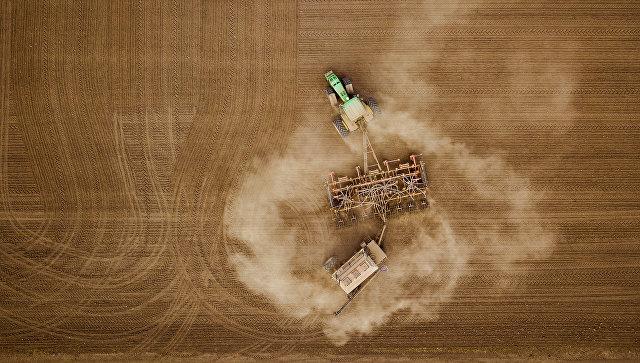 На Кубани завершили сев озимых зерновых