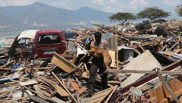Каждые четыре из пяти объявленных тревог цунами оказались ложными
