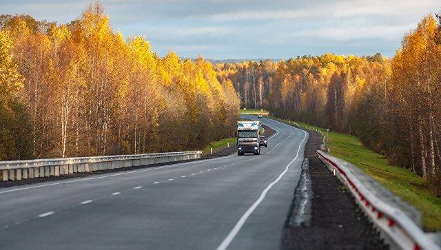 Осенний лес вдоль автодороги Кола в Кондопожском районе Республики Карелия