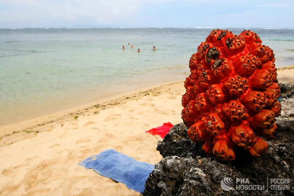 На пляже Нуса Дуа - побережье острова Бали.