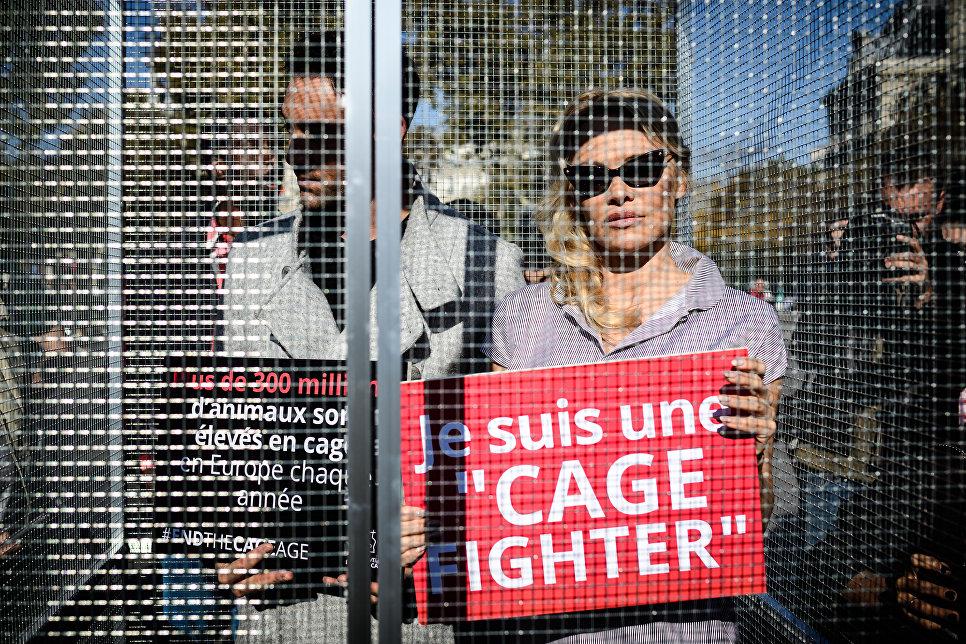 Актриса Памела Андерсон на акции CIWF в Париже