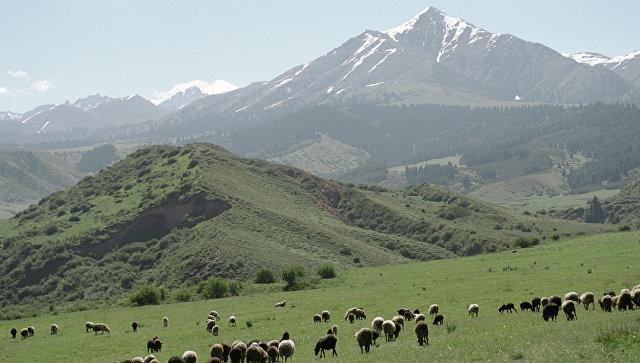 Горы Киргизии. Архивное фото