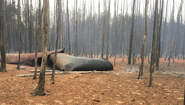 Во Владимирской области загорелся магистральный газопровод