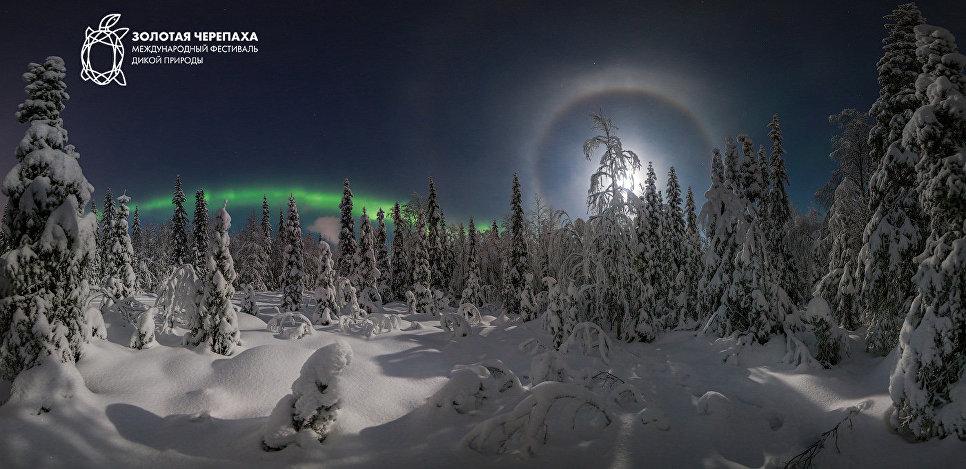 Лунное гало. Истомин Виталий/Россия
