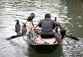 Рыбак плывет в лодке с ястребами по реке Учжэнь, Китай