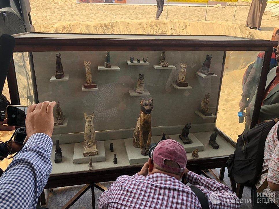 В Египте нашли гробницы с мумифицированными животными