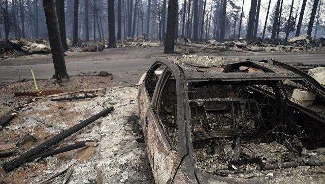 Последствия лесного пожара в городе Парадайз в штате Калифорния. Архивное фото