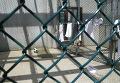 Тюрьма для террористов на «острове свободы»