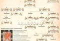 Цари и императоры из династии Романовых