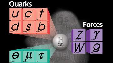 Кварки, лептоны и взаимодействия, описанные Стандартной моделью