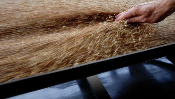 Работа зернового терминала. Архивное фото
