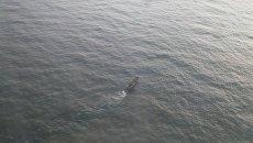 Поиск экипажа в Охотском море