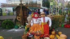 Ярмарка Органический дивограй в Киеве