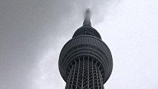 Небесное дерево высотой 634 метра выросло в центре Токио