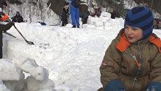 Эскимосское жилище для мышей и ежиков построил ребенок в Мурманске