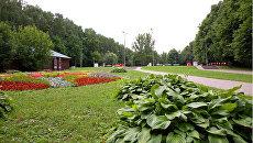 Измайловский парк. Архивное фото