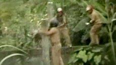 Изгнание леопарда из деревни превратилось в военную операцию