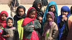 С опозданием на 10 дней начался новый учебный год в провинции Кандагар