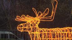 Светящиеся олени, елки и снеговики – новогодняя иллюминация в московском парке