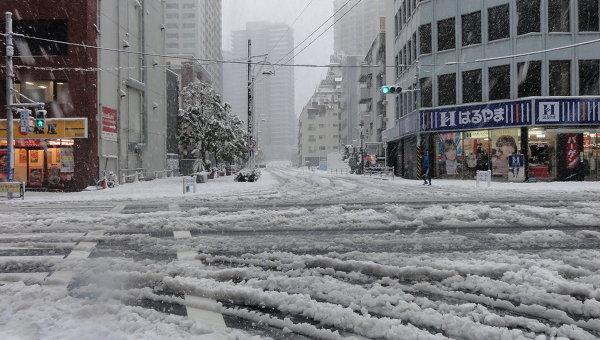 Снегопад в Японии. Архивное фото.